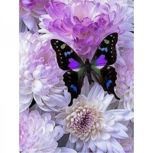 Flower and Butterfly Round